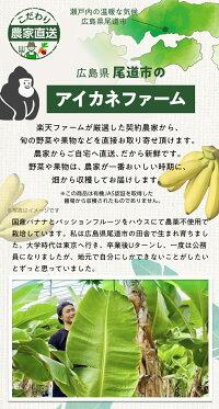 瀬戸内の温暖な気候の広島県尾道市の熱帯農園で育てています。