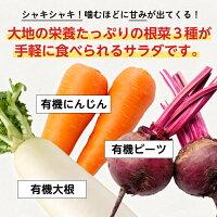 大地の栄養たっぷりの根菜3種が手軽に食べられるサラダです。