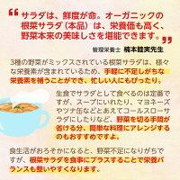 サラダは、鮮度が命。オーガニックの根菜サラダ(本品)は、栄養価も高く、野菜本来の美味しさを堪能できます。
