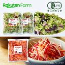 【割引クーポンあり】100%オーガニック 根菜サラダ200g×1袋&ミックス100g袋サラダ×2袋