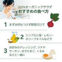 【割引クーポンあり】オーガニック野菜3種のサラダ80g×4個国産