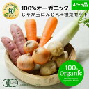 【330円OFFクーポン配布中】全国旬セレクト じゃが玉にんじん+根菜セット