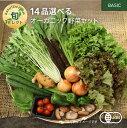 【330円OFFクーポン配布中】14品選べるオーガニック野菜セット (20種から選択)