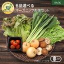 【330円OFFクーポン配布中】6品選べるオーガニック野菜セット (20種から選択)