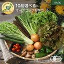 【330円OFFクーポン配布中】10品選べるオーガニック野菜セット(20種から選択)