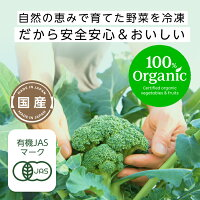 【予約商品】100%オーガニック冷凍ブロッコリーライスセット6袋