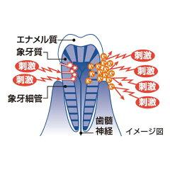 シュミテクト歯周病ケア90g6枚目