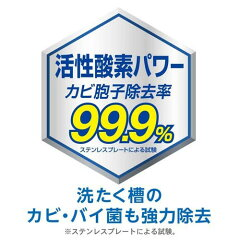 【ケース販売】アリエールサイエンスプラス洗たく槽クリーナー250g×12個3枚目