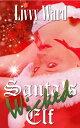 Santa's Wicked E...