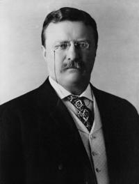 洋書, FICTION & LITERTURE Theodore Roosevelt and His Time: a Chronicle of the Progressive Movement Harold Howland
