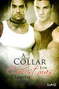 A Collar for Christmas【電子書籍】[ A.E. Lawless ]