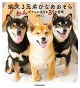柴犬3兄弟 ひなあおそら わんダフルに生きる31の言葉【電子書籍】[ yu matsu ]