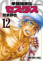 拳闘暗黒伝セスタス 12