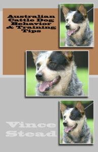 Australian Cattle Dog Behavior & Training Tips【電子書籍】[ Vince Stead ]