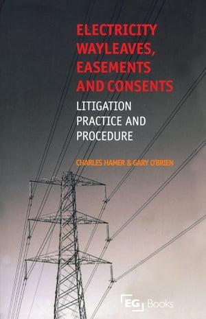 洋書, COMPUTERS & SCIENCE Electricity Wayleaves, Easements and Consents Charles Hamer
