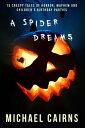 A Spider Dreams1...