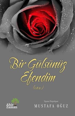 Bir G?ls?n?z Efendim【電子書籍】[ Mustafa O?uz ]