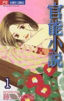 官能小説の画像