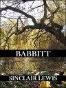 楽天Kobo電子書籍ストアで買える「Babbitt (Reader's Edition【電子書籍】[ Sinclair Lewis ]」の画像です。価格は316円になります。