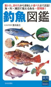 釣魚図鑑【電子書籍】[ 豊田直之 ]