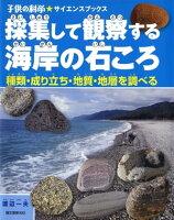 採集して観察する海岸の石ころ 種類・成り立ち・地質・地層を調べる