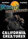 Mystery Undergro...