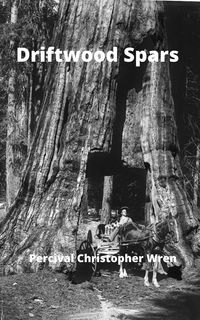 Driftwood SparsThe Stories of a Man, a Boy, a Woman, and Certain Other People Who Strangely Met Upon the Sea of Life【電子書籍】[ Percival Christopher Wren ]