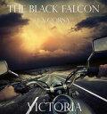 The Black Falcon...