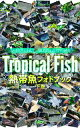 熱帯魚フォトブック 下巻バーチャル・アクアリウム【電子書籍】...