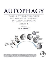Autophagy: Cancer, Other Pathologies, Inflammation, Immunity, Infection, and Aging【電子書籍】