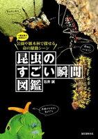 昆虫のすごい瞬間図鑑 一度は見ておきたい!公園や雑木林で探せる命の躍動シーン