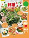 野菜で楽々バテないレシピ【電子書...