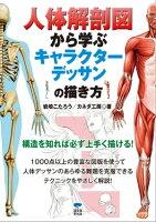 人体解剖図から学ぶキャラクターデッサンの描き方