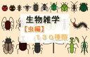 生物雑学【虫編】130種類【電子...