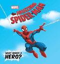 Amazing Spider-M...