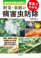 写真でわかる野菜・果樹の病害虫防除 病害虫対策 決定版!!