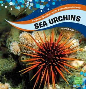 洋書, BOOKS FOR KIDS Sea Urchins Jody S. Rake