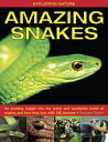 Amazing SnakesAn...