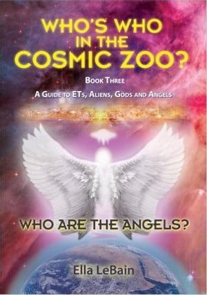 洋書, SOCIAL SCIENCE Who Are The Angels? Book Three A Guide to ETs, Aliens, Gods Angels Ella LeBain