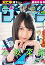 週刊少年サンデー 2019年17号(2019年3月27日発売)【電子書籍】