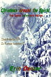 Christmas Around the Spiral (A Spiral Defenders Series Short Story)【電子書籍】[ Erin Danzer ]