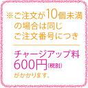 ●ジャンティ しっとりチーズタルト-10 2