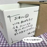 靴磨きセット靴磨き女子部プロデュースShoeCareSet「Square-mono/nature-」モウブレイプレゼント