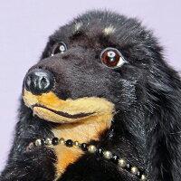 ぬいぐるみぬいぐるみダックス犬
