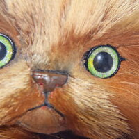 ぬいぐるみ猫ぬいぐるみ猫ペルシャ猫