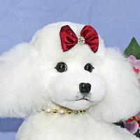 トイプードルぬいぐるみ特選品トイプードルファークラフト社製ハンドメイド毛皮ラムクリスマスギフトイヌプレゼント品