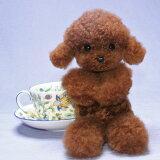 プードル ぬいぐるみ 犬 ティーカッププードル プードルグッズ かわいい リアル 犬