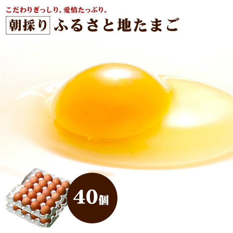 【有名ホテル御用達】 ふるさと 地 たまご 40個 【九州 熊本県産 新鮮 安全 農場直送 卵 生卵】