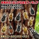 送料無料【10体セット 昆虫 セット 2 フィギュア 】甲虫...