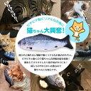 猫 おもちゃ リアル フィッシュ 電動 魚のおもちゃ 動く魚 USB 充電 猫じゃらし ねこ夢中 サケ ソウギョ コイ フナ /リアルフィッシュ 2